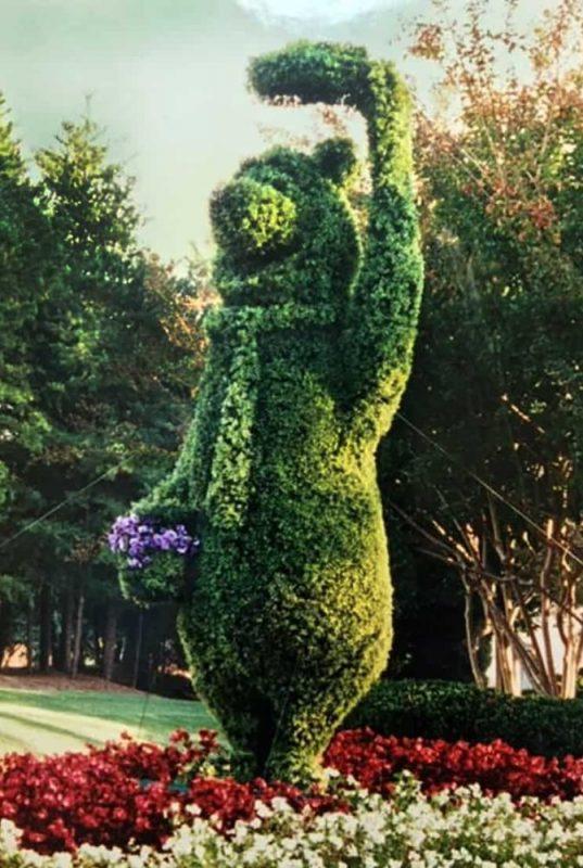 Yogi Bear Topiary
